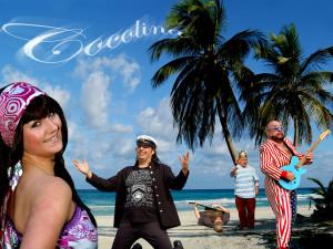 Cocolina & Captn & Crew 20x15